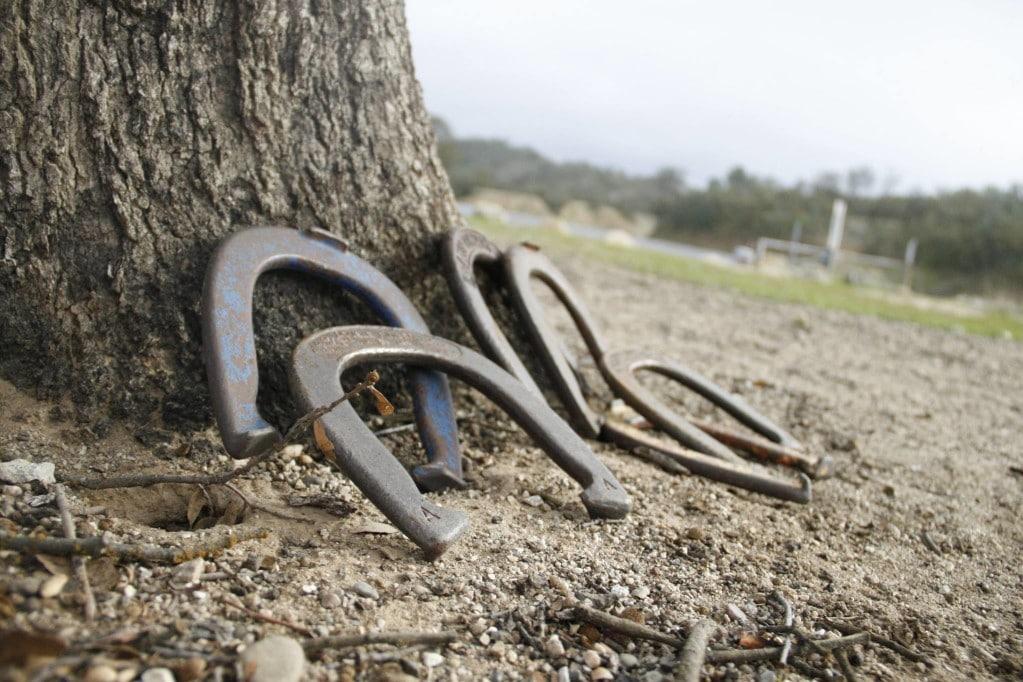 Finding the Best Horseshoe Set